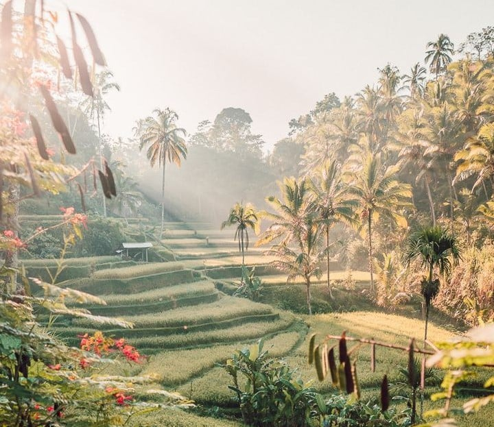 Instagrammable Places in Bali 5